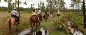 riding trails with horses