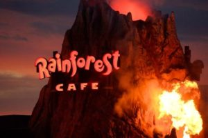 orlando rainforest restuarant