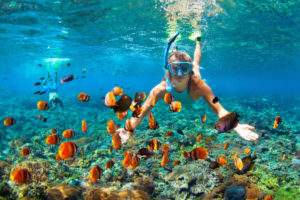 Mesoamerican Barrier Reef attraction