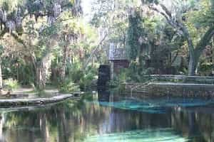 Juniper Springs Recreation Area