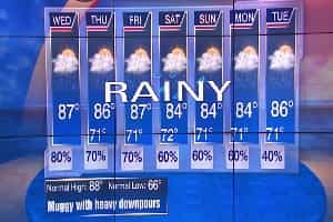 Check the Weather