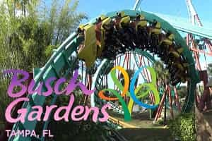 Best Roller Coasters in Florida