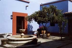 Stay Promo Museums in Oaxaca