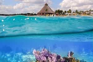 Fun Activities In Cancun