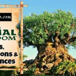 Top Animal Kingdom Rides For Kids