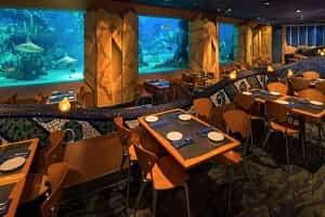 Best Restaurants At Epcot