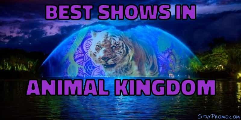 Best Shows Disney World