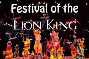 Lion King Dinner Show Animal Kingdom